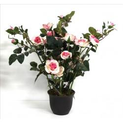 Maceta rose blanca