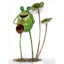 Rana larga trompeta