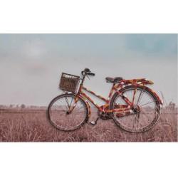 Cuadro 4 bici 60x90